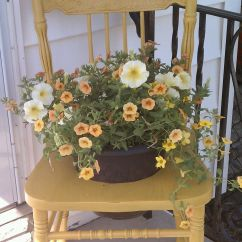 Chair Planter Stand Motorized Easy Vintage Plant Repurpose Pinterest
