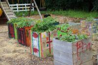 Kids garden | DIY Projects | Pinterest