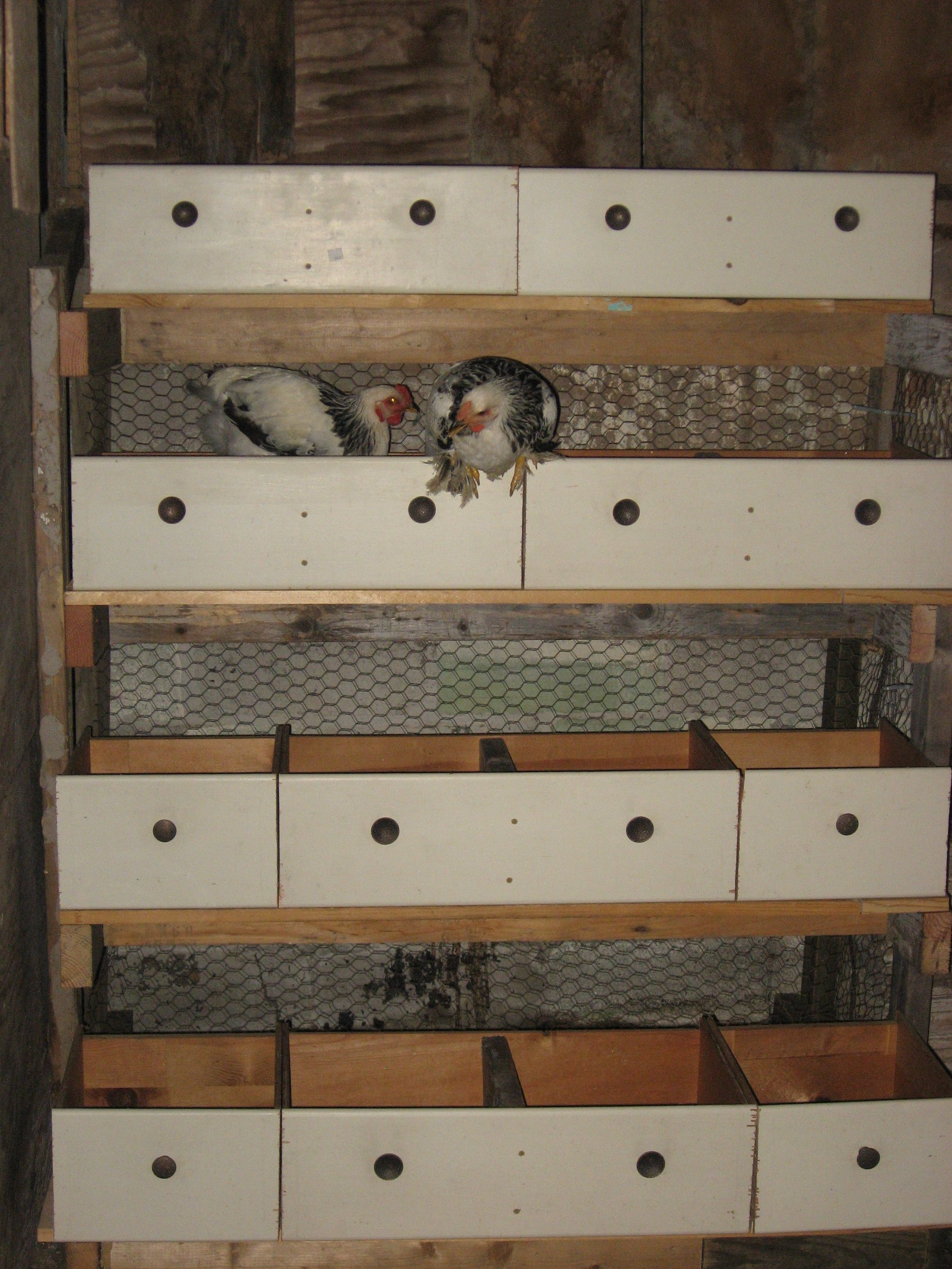 Savvy Housekeeping  5 Recycled Chicken Nesting Boxes