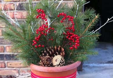 Outdoor Christmas Decorations On Pinterest Yard
