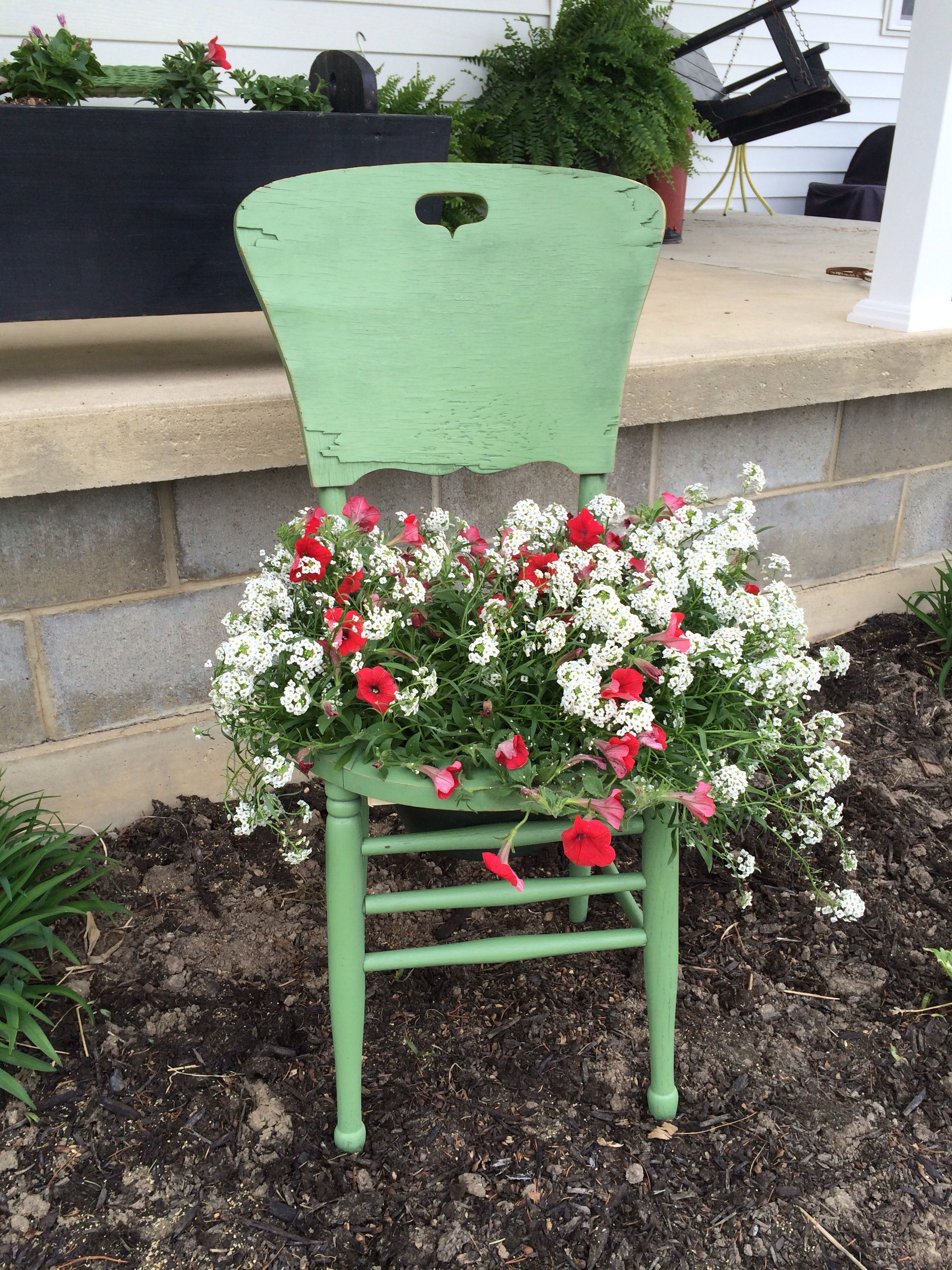 wheelchair with pot blue parrot chair covers rustic flower our finished projects pinterest
