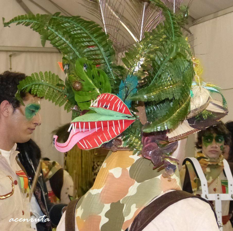 Olivenza. Carnavales 2014