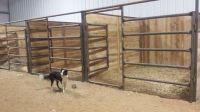 Horse Stall Design Ideas