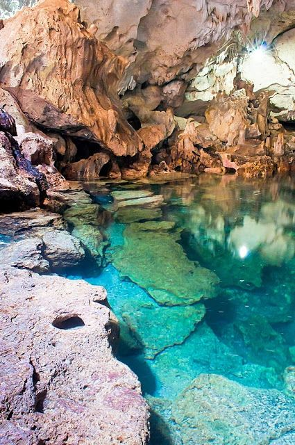 nature | world | philippines | panglao island
