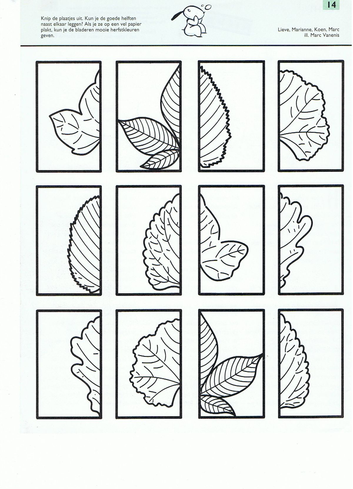 Images About Preschool Trees