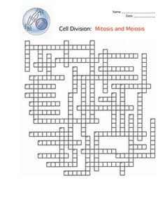 Biology and Chemistry Crossword Puzzles on Pinterest