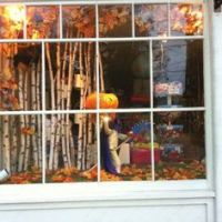 autumn shop window on Pinterest | Pumpkin Decorating ...