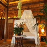 Hawaiian boutique hotel design on Pinterest | Tropical ...