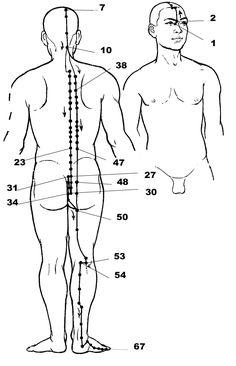 Massage, Reflexology, EFT Tapping, Acupressure