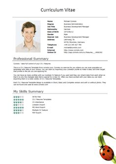 Free Resume Templates On Pinterest Resume Templates