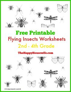 Summer is a perfect time to study insects!  Supplement an insect unit study with these FREE Flying Insects Worksheets | The Happy Housewife