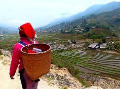 Vietnam - Sapa Rizières en terrasse, communautés ethniques, marchés colorés https://picsandtrips.wordpress.com/2014/06/02/sapa-nord-vietnam-et-frontiere-chinoise/