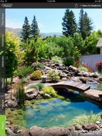 Amazing backyard pond | Garden at Home | Pinterest