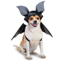 Petco Bat Halloween Dog Costume | the fur baby | Pinterest