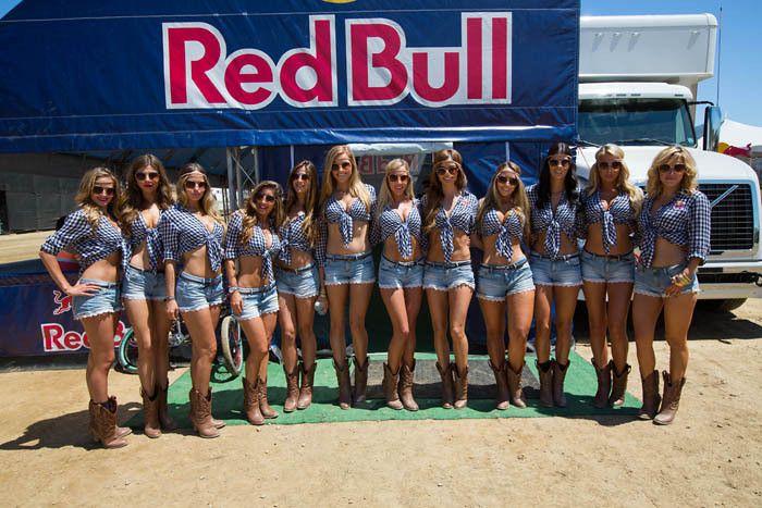 red bull girls | Grid Girls - Groups | Pinterest