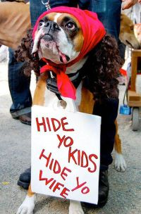 boxer dog costumes image search | Humor! | Pinterest
