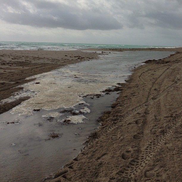 the tides eroding the shores 的圖片結果
