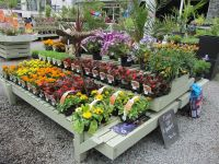 garden centre display | Garden centers | Pinterest