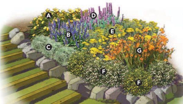 expert building flower garden