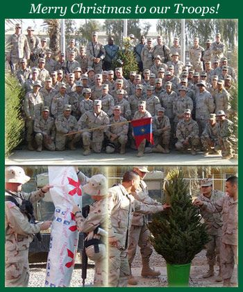 Christmas Trees for Troops