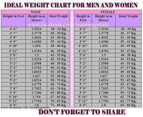 Body Fat Chart Women Ideal Body Fat Percentage Chart Unique Ideal