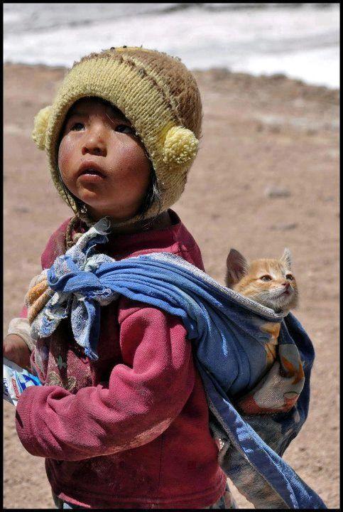Adorable♥Niñoygato - child and cat ~ Puna, Peru