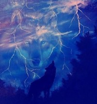 Lightning Wolf | Wolves and Native American Indians ...