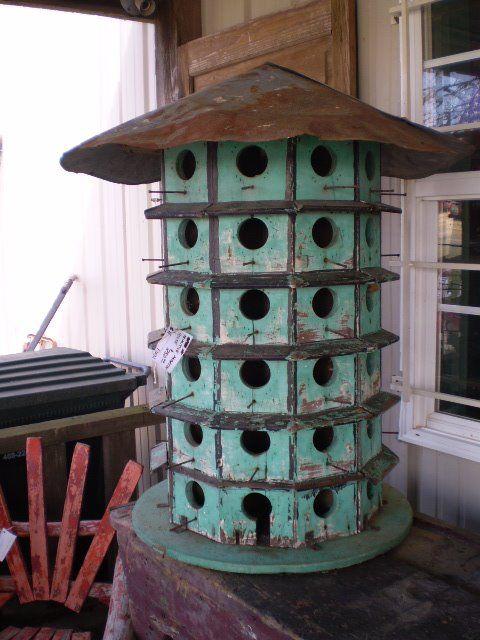 Oiseau recherche appartement ou maison  Callicanthus le jardin