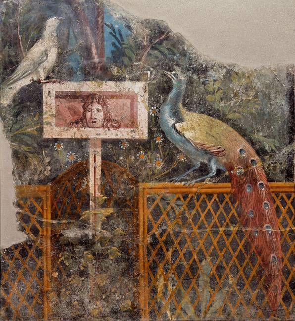Garden with Peacock and Dove, wall fresco, Fourth style to 50-79 n. Chr. , Naples National Archaeological Museum.