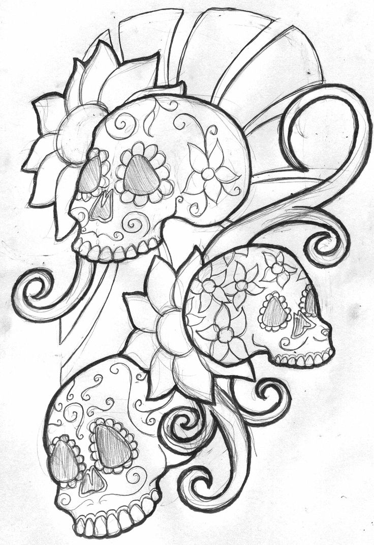 cool skull and rose drawings sketch coloring page