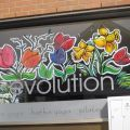 Spring flowers window painting painting ideas pinterest