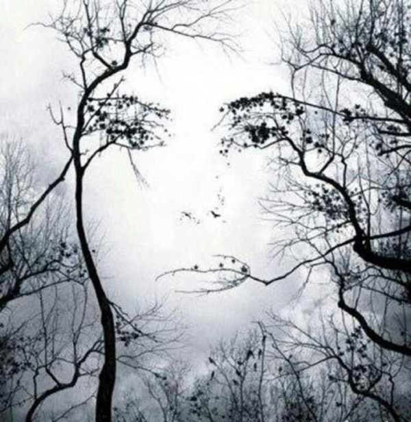 The face of Mother Nature I love art and especially