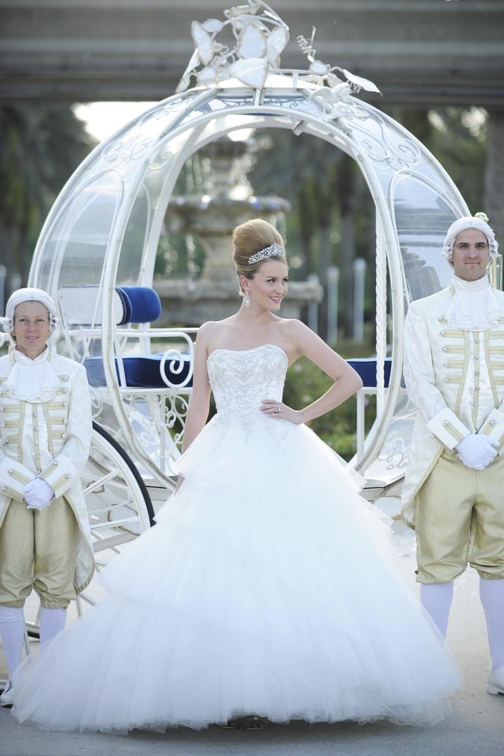 Disney Themed Wedding #2  Cinderella (blue And Silver