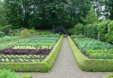 Beautiful Vegetable Garden Layouts