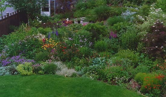 perennial garden ideas zone
