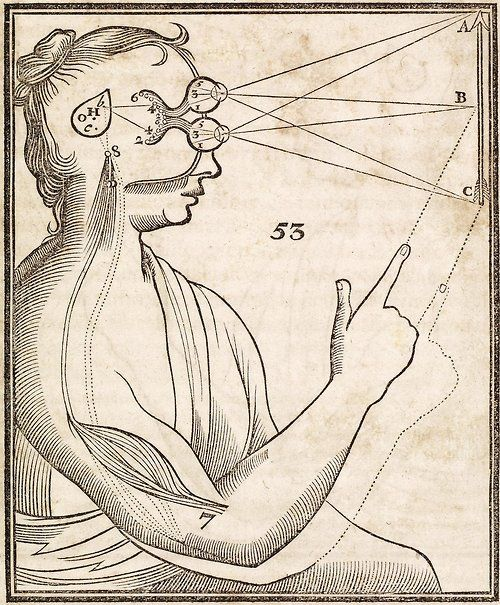 A drawing from the book by Rene Descartes, De Homine, published in 1662