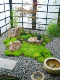 Indoor Japanese garden | Gardening | Pinterest