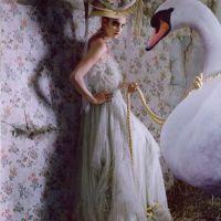 Fashion photography: Tim Walker