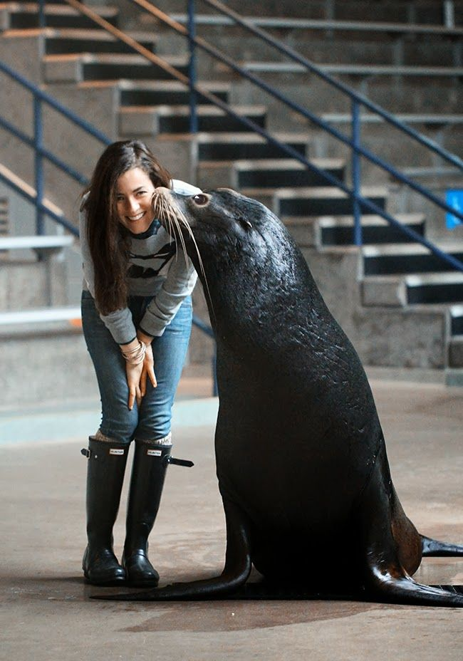 Sarah of Classy Girls Wear Pearls wearing her Hunter boots at Mystic Aquarium