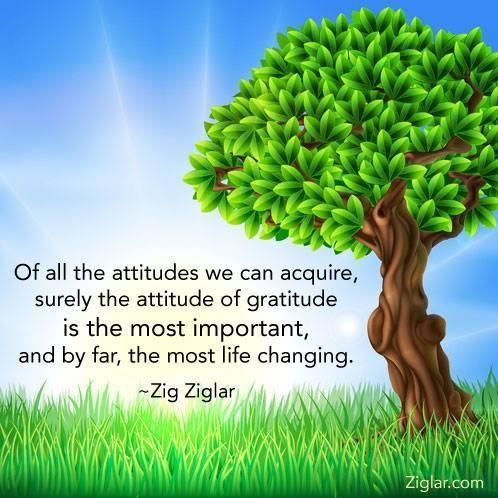 Attitude Of Gratitude Quotes Quotesgram