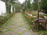 english garden | Pool and Patio | Pinterest