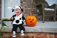 Pottery Barn Kids, Dog Costume | Halloween | Pinterest