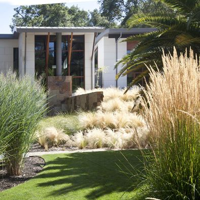 Australian Bush Sloping Garden Design, Pictures, Remodel, Decor and Ideas - page 9