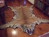 Faux animal skin rug   My dream room   Pinterest