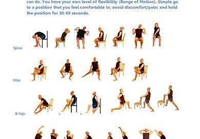 Elderly Chair Exercise