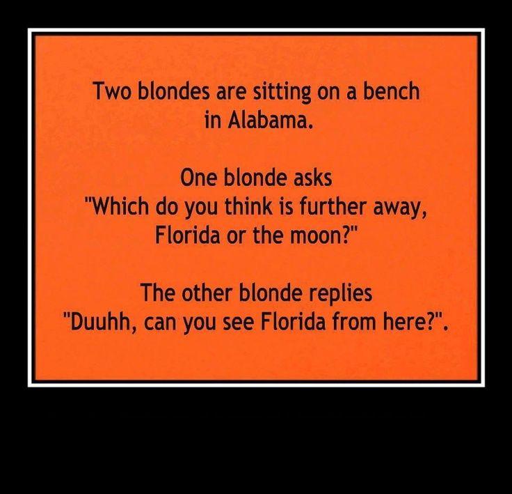 Dumb Blonde Jokes Clean Funny Short