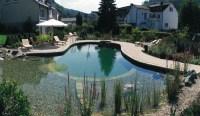 Small Backyard Pool Designs Ideas | Home Office Ideas