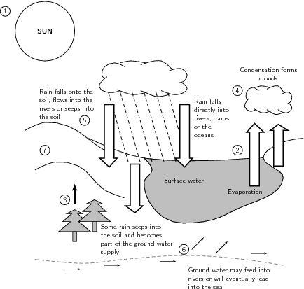 Water Cycle Diagram Worksheet Sketch Coloring Page