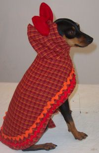 "Here is Twiggy modeling her favorite piece from ""her dog coat collection"" that was made just for her. This is a light-weight coat with a hood embellished with a big red bow and orange and red rick-rack."
