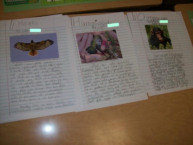 Research Paper Topics For 4th Grade